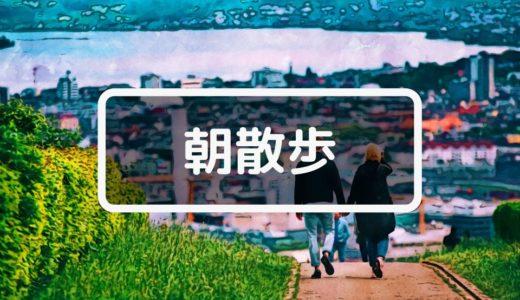 最強のメンタル健康法「朝散歩」のススメ 『ストレスフリー大全』 樺沢紫苑